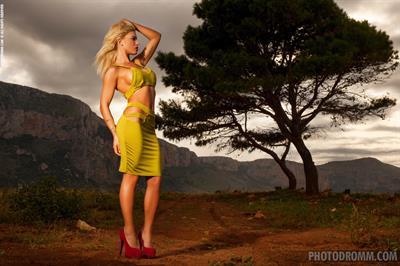 Brigitta Photodromm
