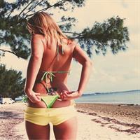 Ashlynn Brooke in a bikini