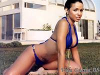 Vida Guerra in a bikini