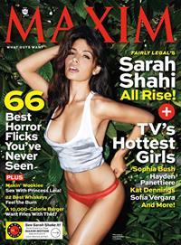 Sarah Shahi in a bikini
