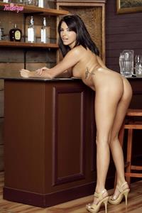 Danica Dillan Up Against the Bar For Twistys