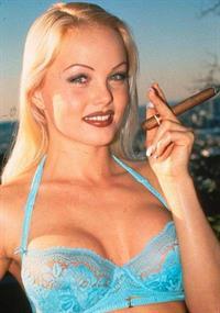 Sylvia Saint in lingerie