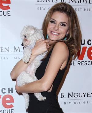 Maria Menounos Makeovers For Mutts L.A.Fundraiser on March 14, 2013