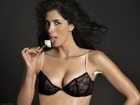 Sarah Silverman in lingerie