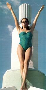 Catherine Bach in a bikini