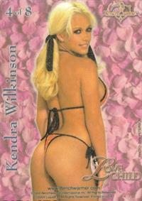 Kendra Wilkinson in a bikini